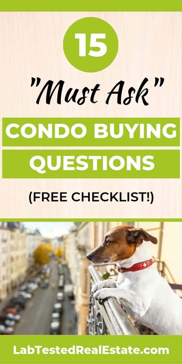 Condo buying dog looking over balcony