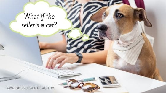 new real estate agent giving home buyer presentation to dog